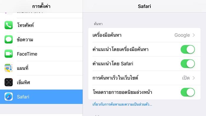 ตั้งค่า Safari iPhone